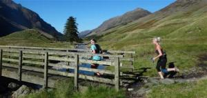 ennerdale trail run
